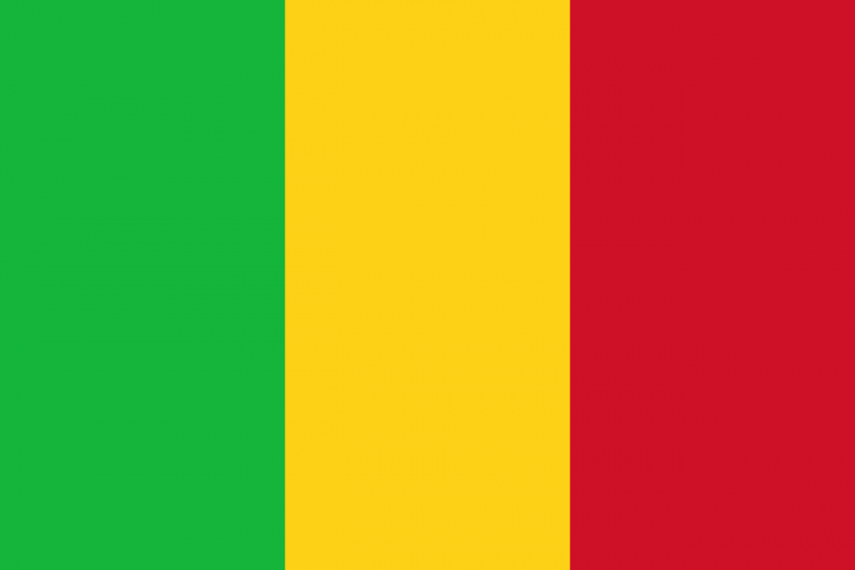 Mali officially ratifies the Statute of IOFS